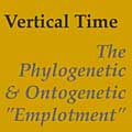 Vertical Time essay